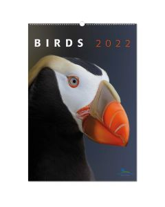 Birds kalender 2022