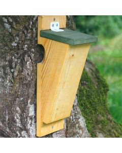 Vivara nestkast boomkruiper hout