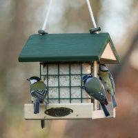 Vogelbescherming vetblok insecten