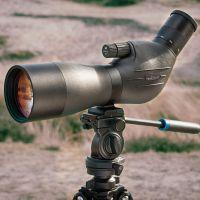 Vogelbescherming Havik 82 ED inclusief 25-50x oculair