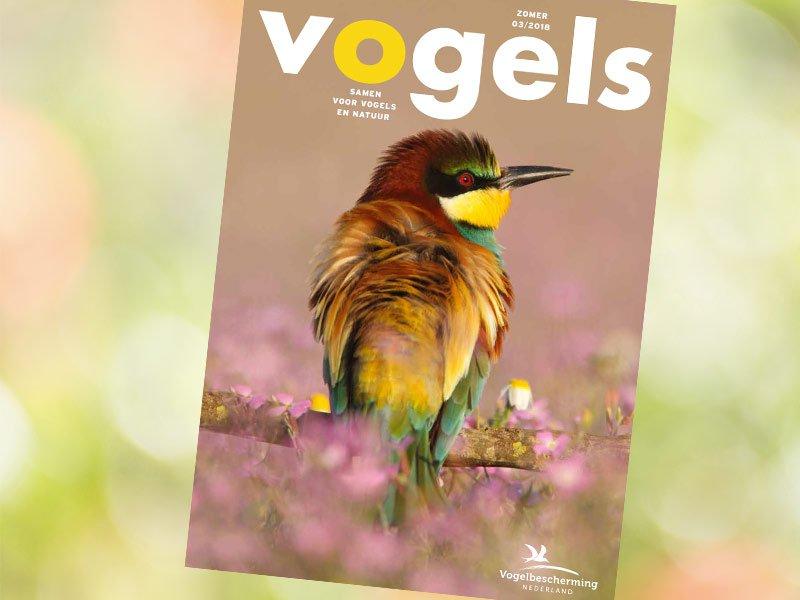Vogels-3 magazine