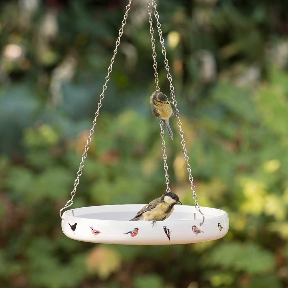 Waterschaal met tuinvogels