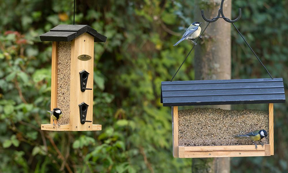 Geniet van de vogels in uw tuin!